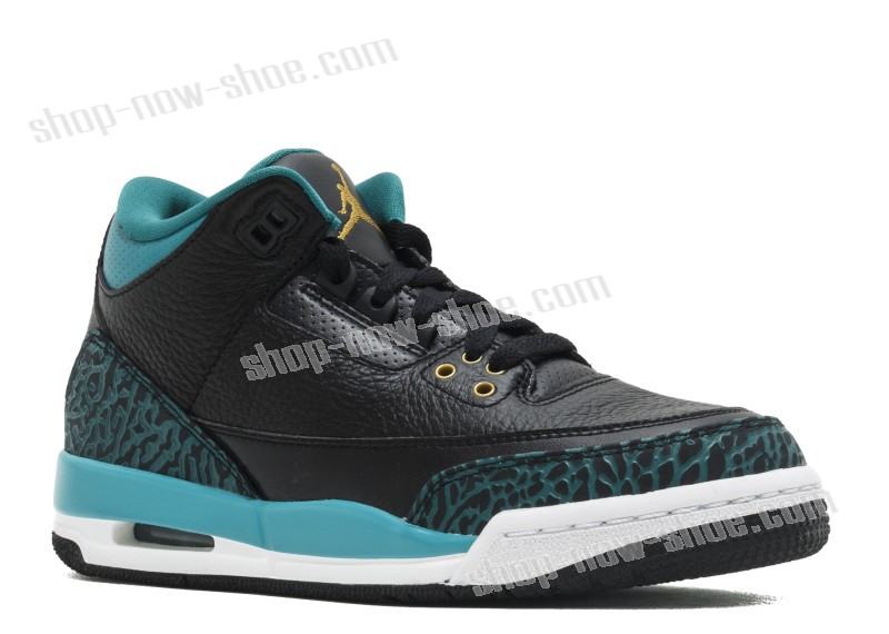 Air Jordan 3 Retro Gg Of Nice Model  - Air Jordan 3 Retro Gg Of Nice Model-01-1